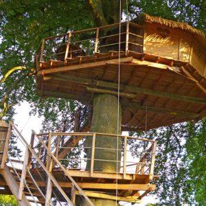 Cabane-dans-les-arbres-Baie-de-Somme