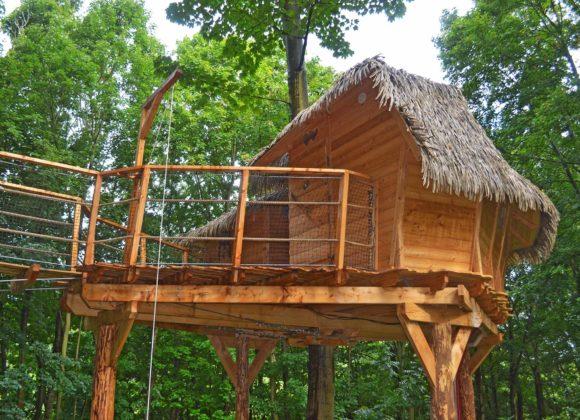 Hébergement Cabane dans les arbres 2 anges